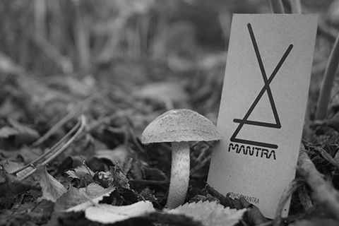 Mantra - Tarjeta Ecológica